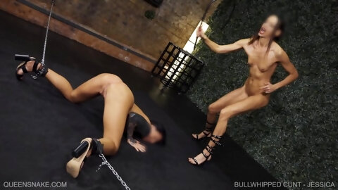 Queensnake-com - Bullwhipped Cunt - Jessica - Queensect-com